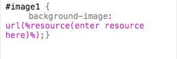Custom Snippet Code